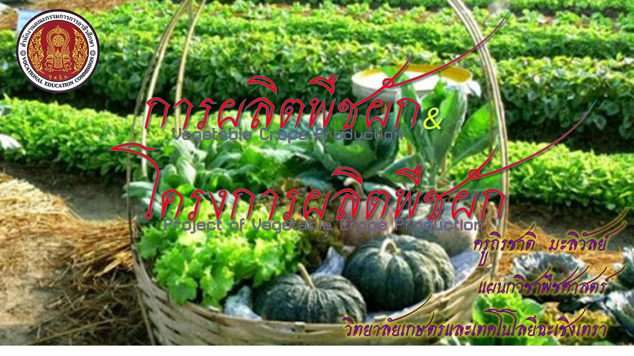 20501-2201 การผลิตพืชผัก/ 20501-2271 โครงการผลิตพืชผัก (ครูถิรชาติ  มะลิวัลย์)